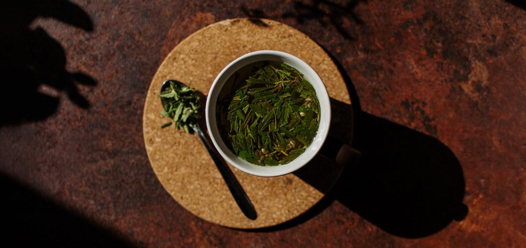 Kanapių arbata, kaip ją paruošti skanią?